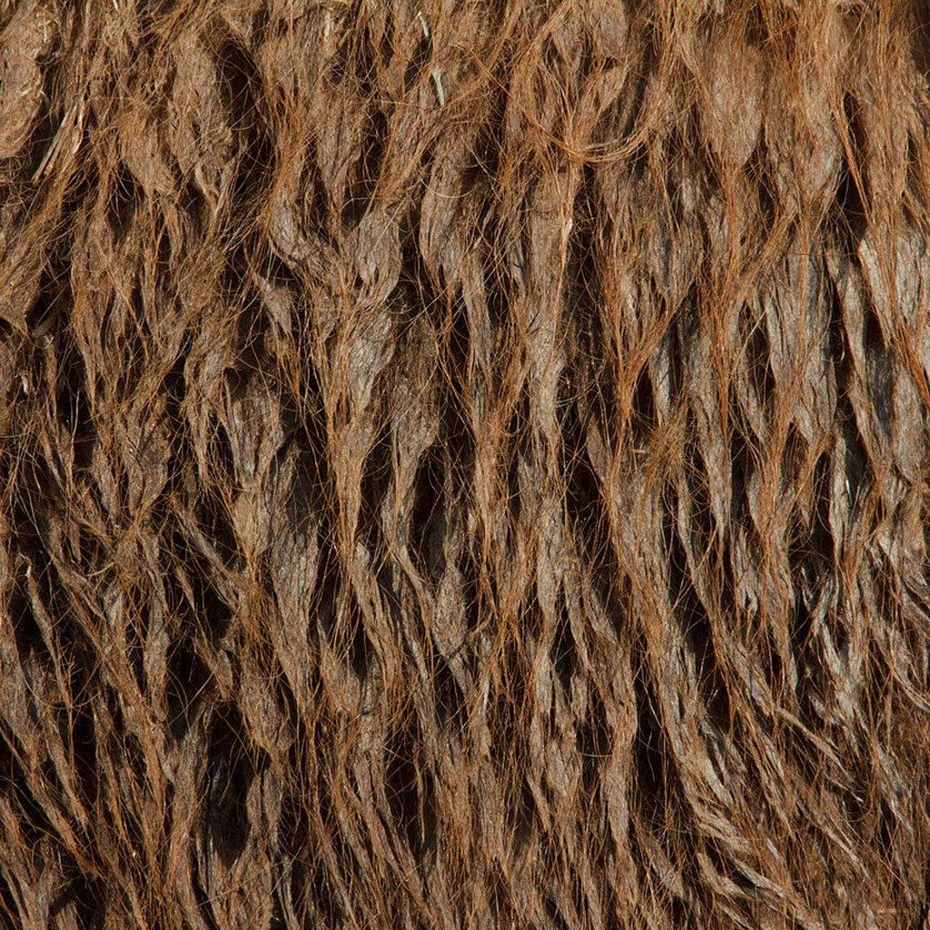 closeup-photographs-of-animal-skin-bactrian_camel