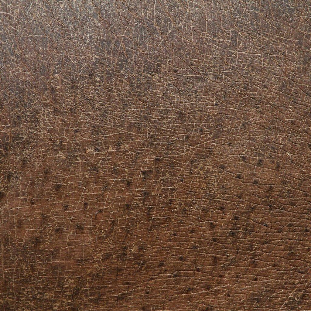 closeup-photographs-of-animal-skin-hippopotamus