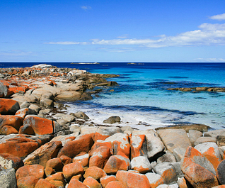 design-destination-tasmania-australia-5